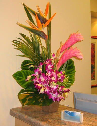 Google Image Result for http://www.flowerduet.com/large_flower_pictures/tropical-gift-flowers_lg.jpg