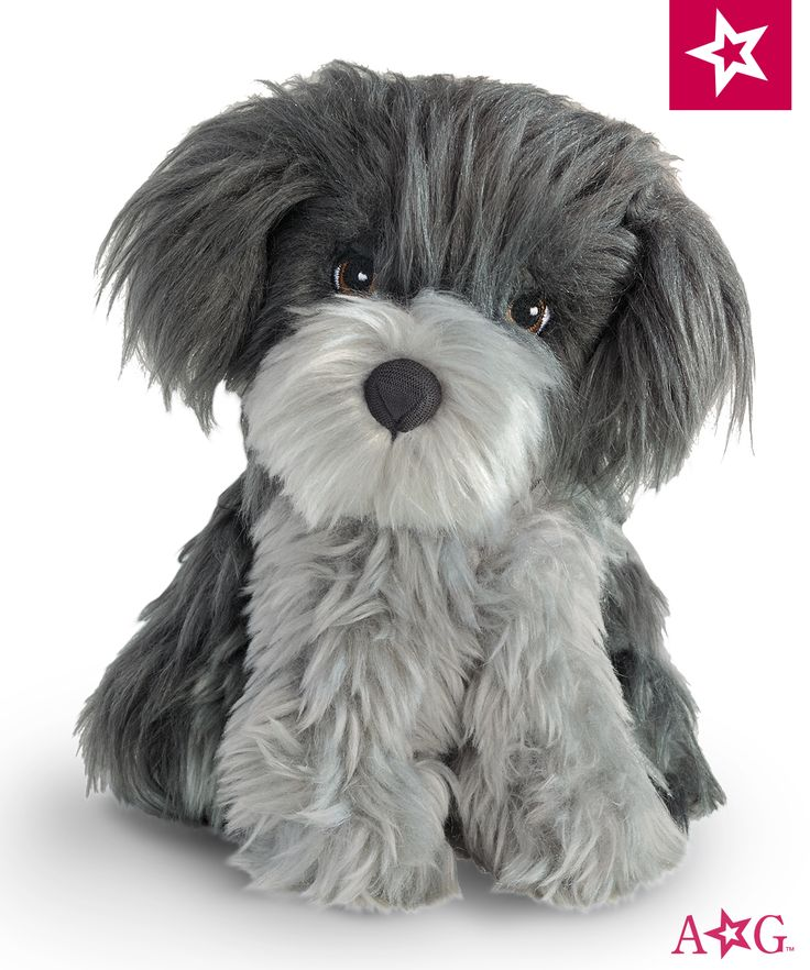 """Nanea and her scruffy poi dog, Mele, are inseparable. """"A-roo! A-roo!"""" Mele sings out when people stop by; her name means """"song."""" Mele has sweet brown eyes and soft gray fur. $22"""