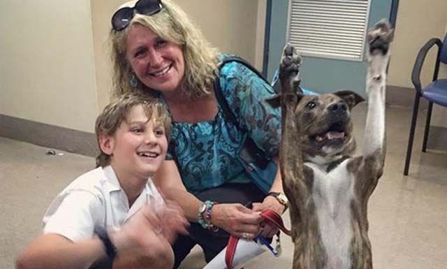 Coso es una perra de 7 años de edad, mezcla de pastor australiano que sin duda alguna está muy emocionada ya que por fin la adoptaron.