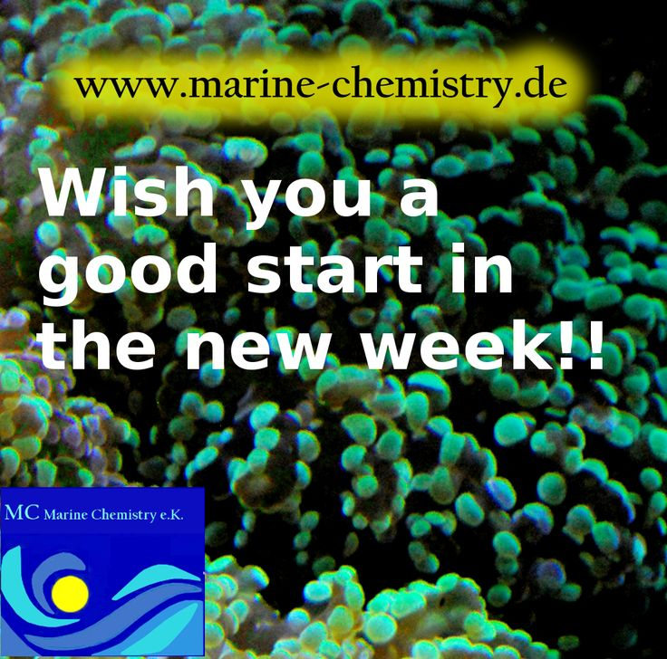 spurenelemente i. meerwasser-aqua, products from MC marie chemistry for reef tanks