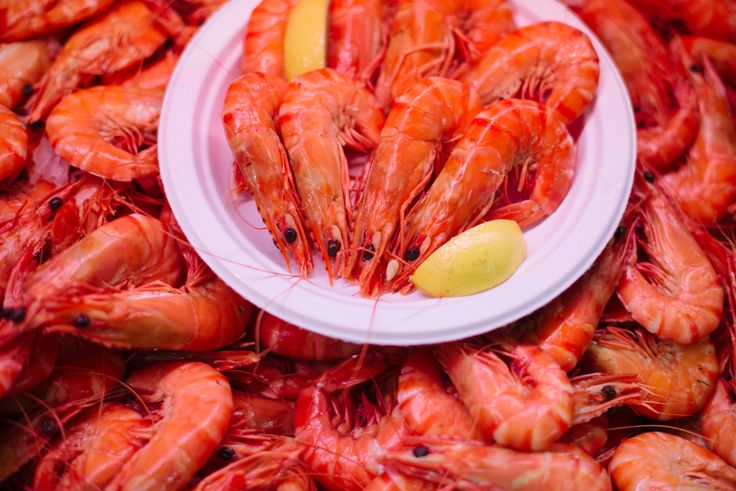 Delicious fresh prawns, available from The Daily Telegraph Park