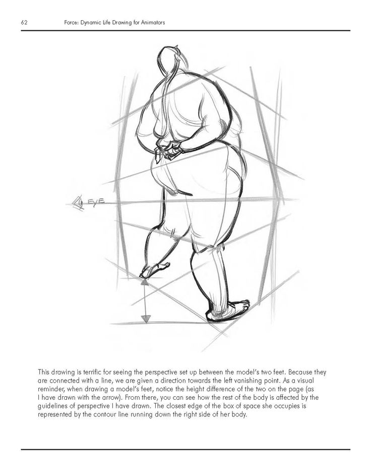 Pin on Book | FORCE - Dynamic Life Drawing For Animators