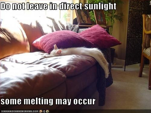 Don't leave in direct sunlight- some melting may occur
