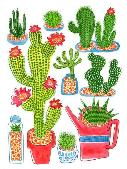Cactus ilustración