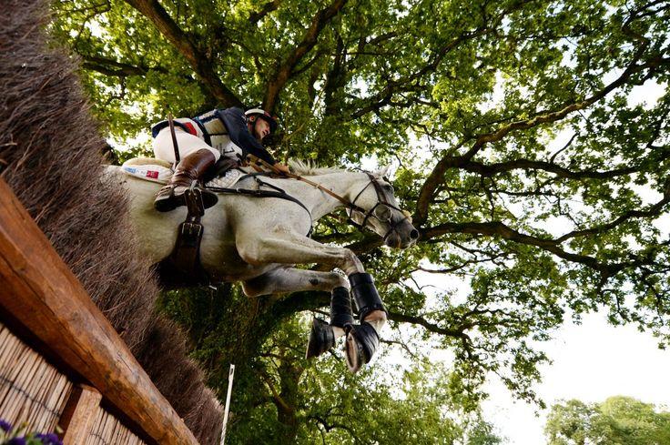 Фото - Alltech FEI Всемирные конные игры 2014 года в Нормандии