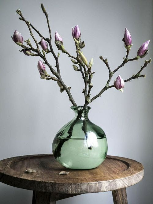 Magnolia branches in a simple vase make a striking floral statement. More
