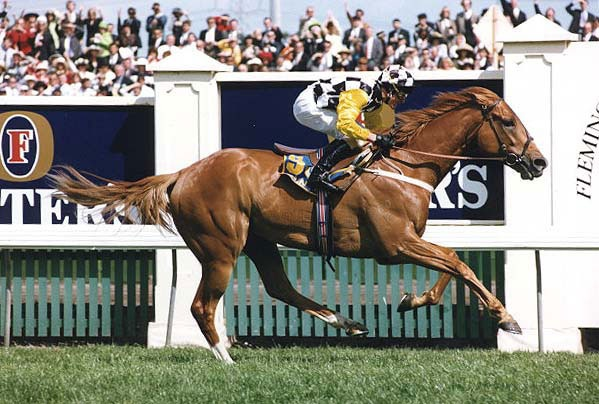 Saintly winning the Melbourne Cup 1996