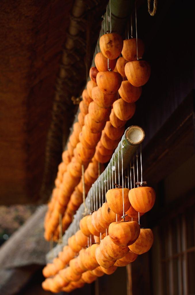 Dried persimmons, Yamanashi, Japan