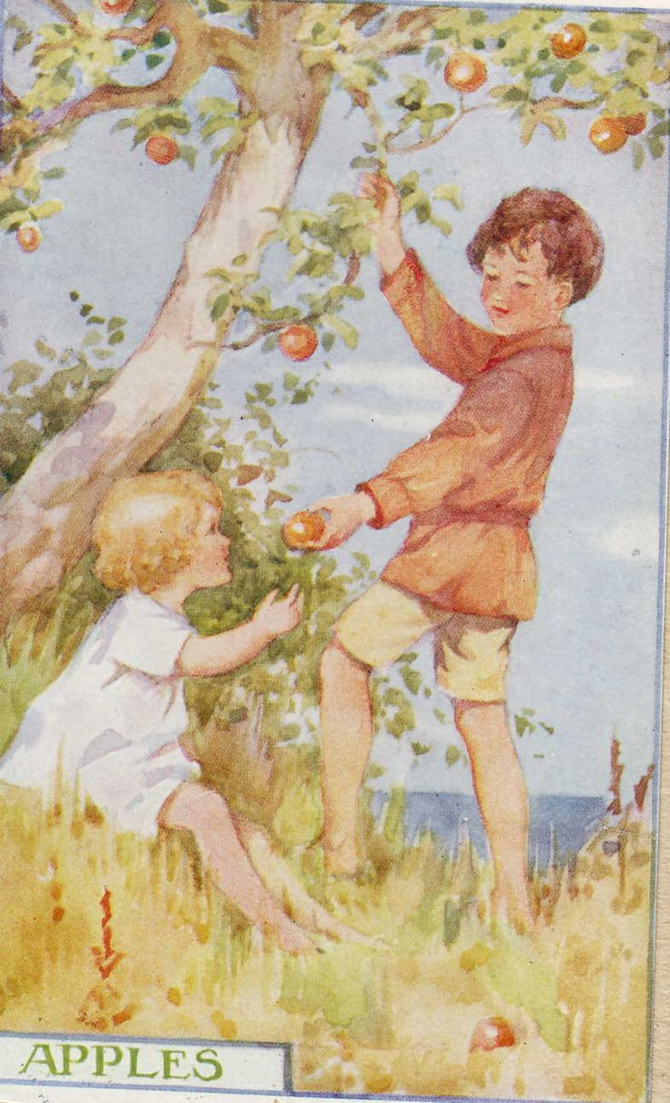 This one reminds me of all the summers my sister and I walked down the mile and a half - long dirt road to the Apple orchard to get fresh gallons of cider and a bag of apples.  Some of my fondest summer memories.  Margaret Tarrant