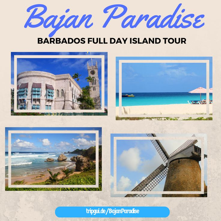 Barbados Bajan Paradise Full-Day Excursion: Spend an entire day learning about the local history and culture of Barbados and then relaxing on the white sandy beaches of Carlisle Bay.
