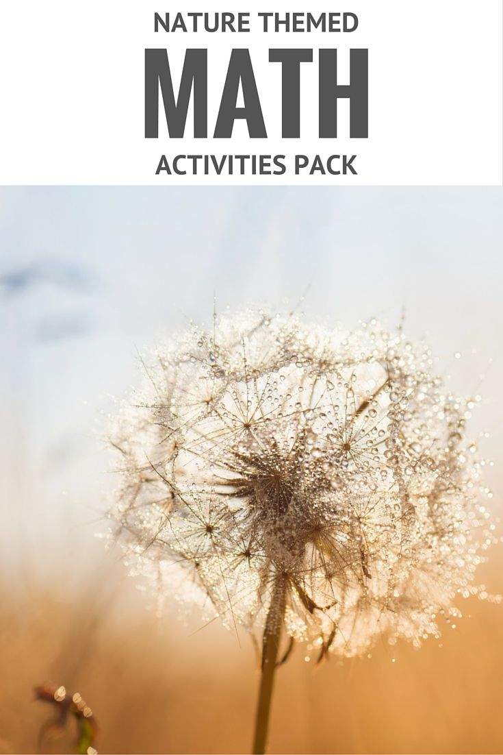Check out these six awesome Montessori inspired nature themed math activities for the indoor and outdoor classroom. Check out the blog for more!