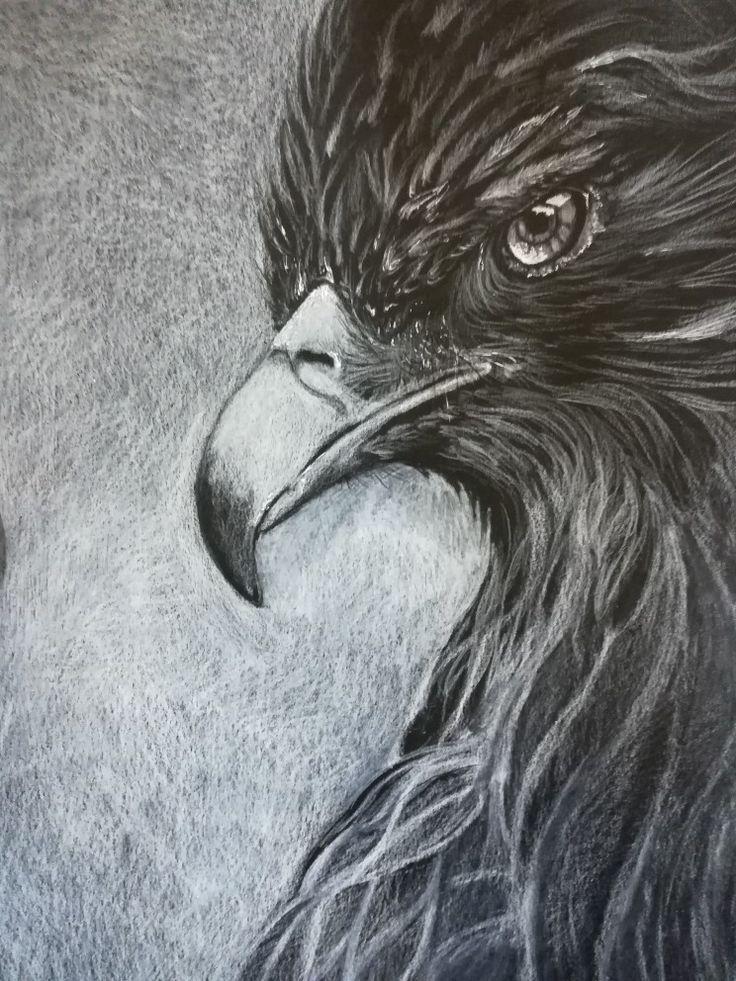Occhio di falco. Matita bianca su cartoncino nero