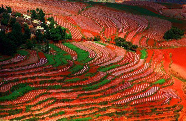 Dongchuan Red Land, Kunming, China
