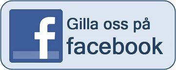facebook logo gilla - Sök på Google