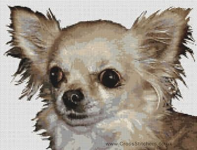 Chihuahua (Smooth Coated) - Dog Cross Stitch Chart