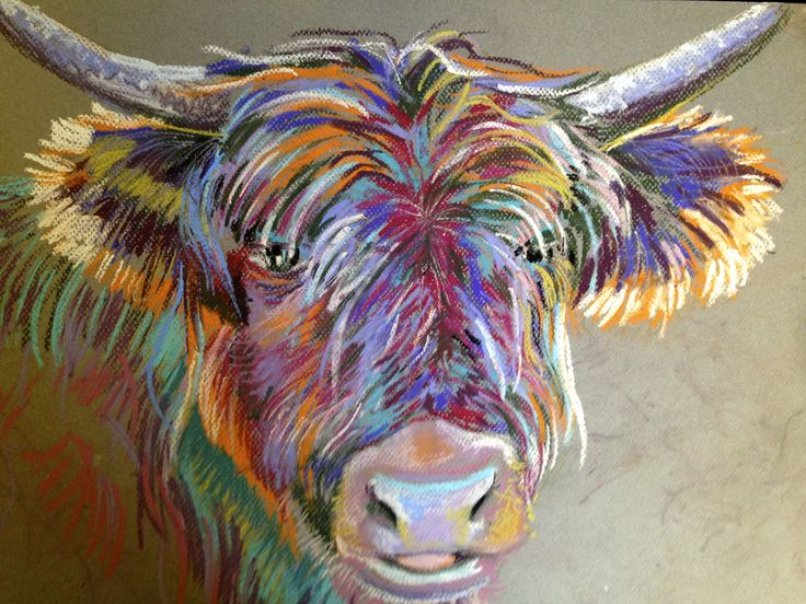 Colourbox Coo, pastels