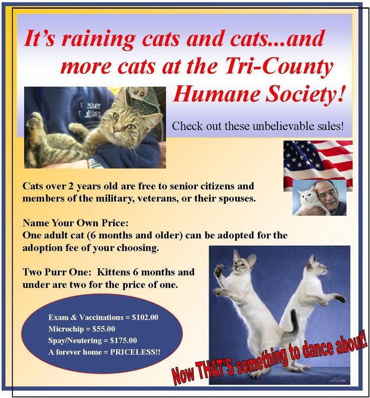Home Tri County Humane Society St Cloud Minnesota Humane Society Society Human