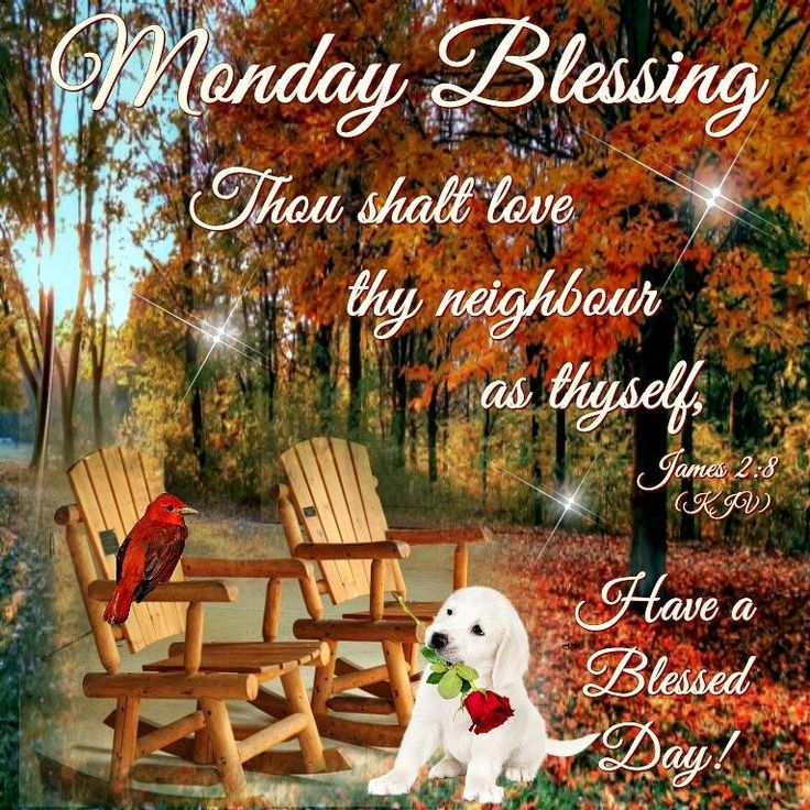 1000 Ideas About Monday Blessings On Pinterest