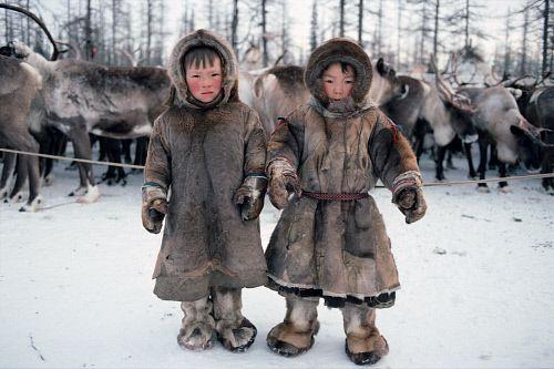 Nenet boys, reindeer herders   Humans   Pinterest   Reindeer herders
