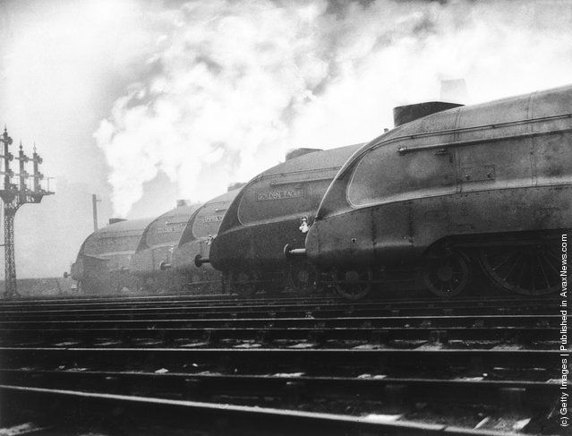 A row of LNER streamlined locomotives belch out smoke at a London railway station, where they are to be tested out. From the left, they are Dominion of New Zealand, Golden Shuttle, Empire of India, Golden Eagle and Number 10,000 R. (Photo by Fox Photos/Getty Images). 1937