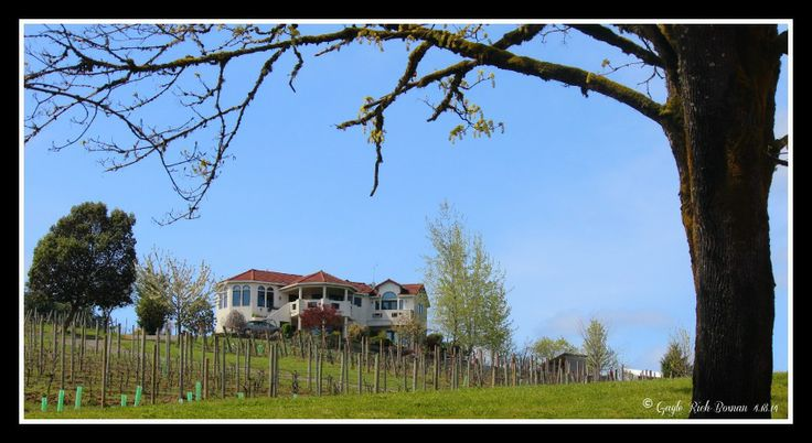 """The Home on the Hill"" Appolloni Vineyards Forest Grove Oregon April 18, 2014 Gayle Rich-Boxman Copyrighted All Rights Reserved 2014 lakehomesatfishhawk.com"