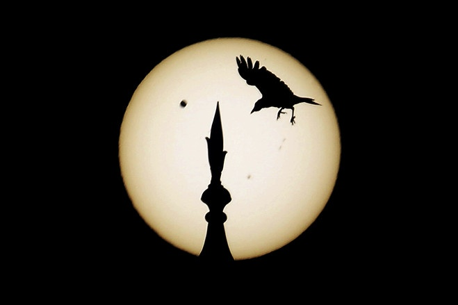 Pictures: Transit of Venus - Scene Asia - WSJTaj Mahal, Photos Gallery, 2012, India, Venus Pass, Venus Transitional, Birds, Photography, Sun