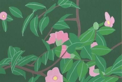 季節の花。2018/1/27山茶花か椿か?