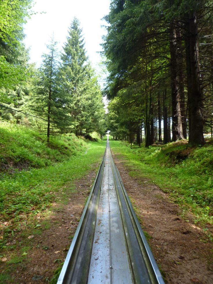 Sommer-Rodelbahn, summer toboggan down mountains in the Alps
