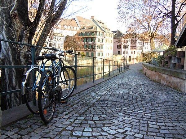 Страсбург одним глазком (вид снизу, с точки зрения кота)