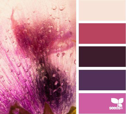 (via Design Seeds): Living Rooms, Purple Colour Palettes, Design Seeds, Frozen Flora, Colors Pallette, Magenta Colors Palettes, Toilets Rooms, Girls Rooms, Cozy Bedrooms