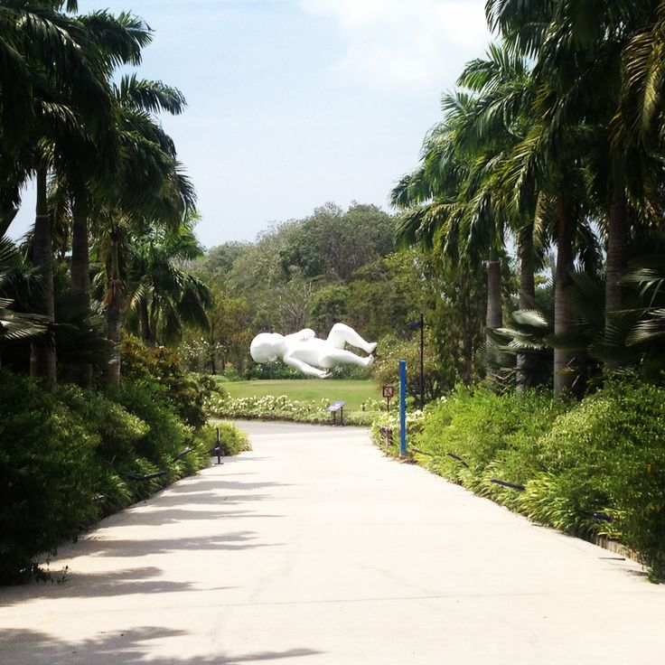 Garden By The Bay Baby 12 best singapore shops images on pinterest   singapore, food