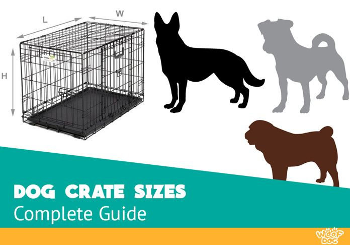 Struggling To Find The Ideal Size Of Your Pet S Crate Take A Look At Our Detailed Chart And 7 Standard Sizes For Differe Dog Crate Sizes Dog Crate Puppy Crate