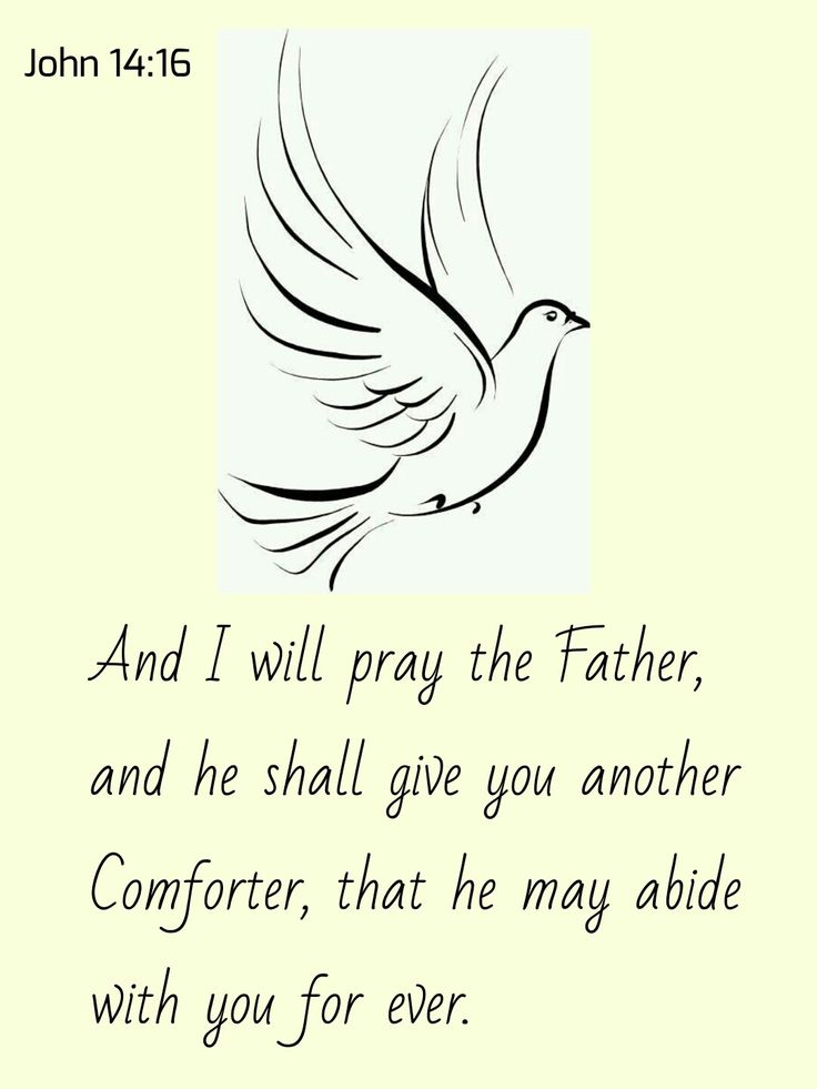 comfort and promise john 14 The promise of the comforter [john:14:15-31 [john:14:26 ]), who is a member of the trinity he is one of the three that bear record in heaven the father, the word, and the holy ghost: and these three are comfort and help.