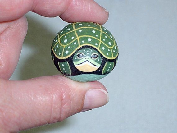 Painted Turtle Pet Rocks