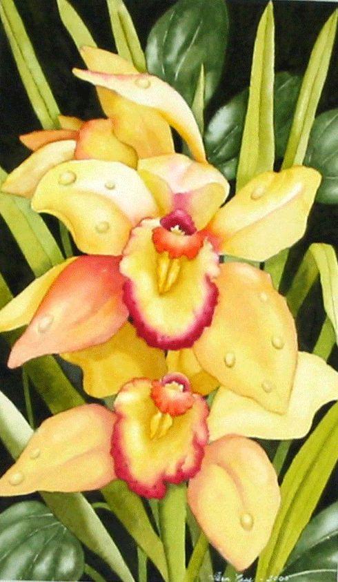 Fern Ness Watercolor