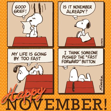 Forgot to wish everyone a happy November! It is hard to believe