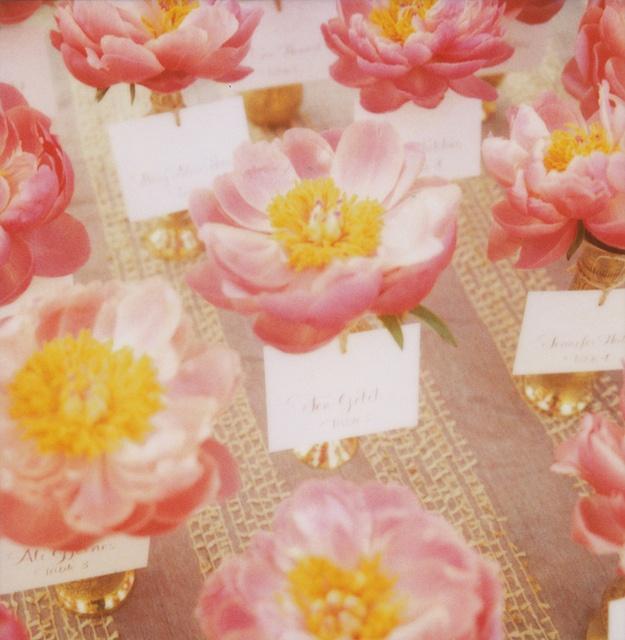 Flower place cards.  By Jen Gotch