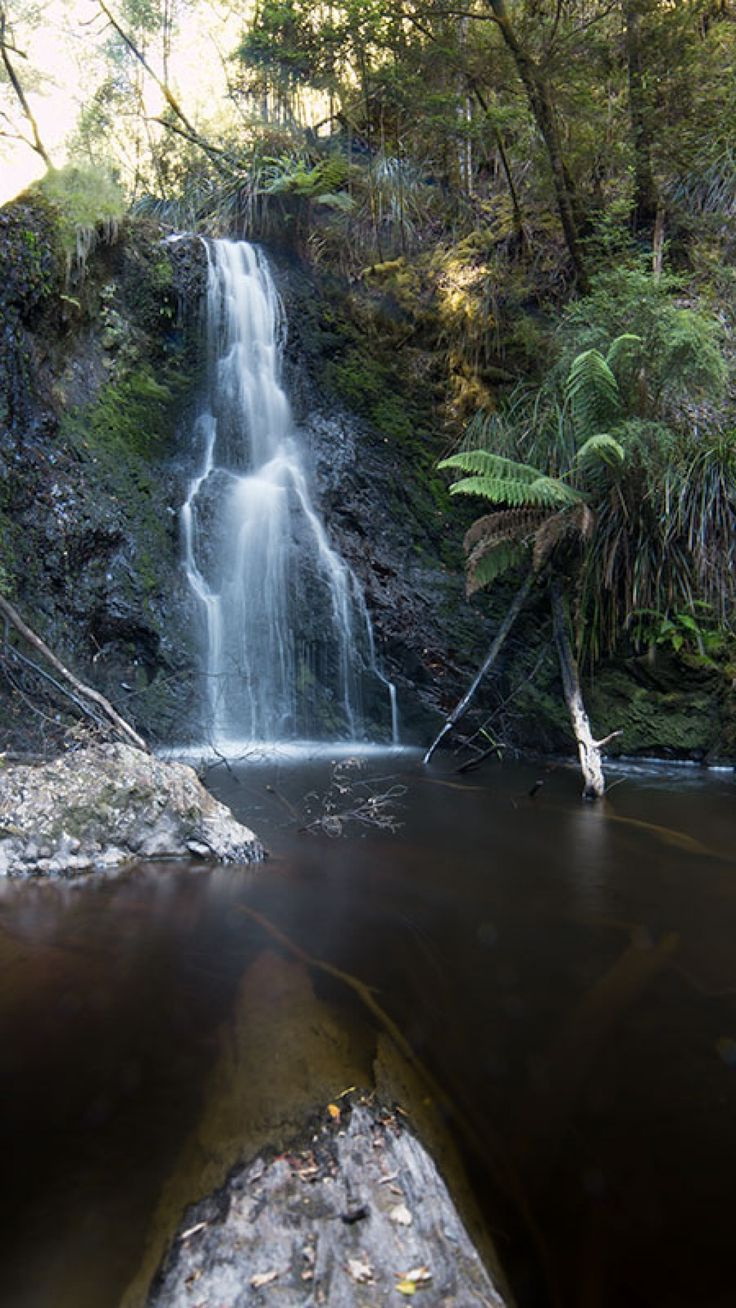 Hogarth Falls, Strahan Tasmania. Walking distance from Strahan Village!