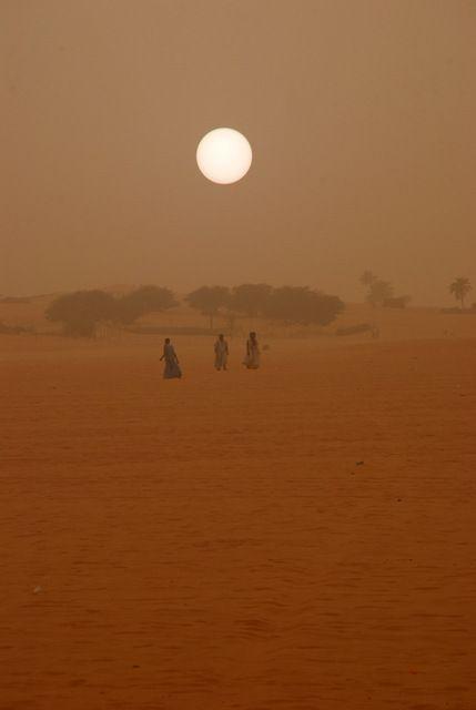 Day 238: Saharan sandstorm, Mauritanian-Western Sahara border