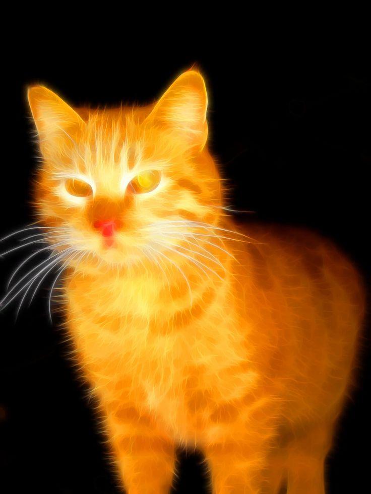 20 Superb Examples of Animal Fractal Art