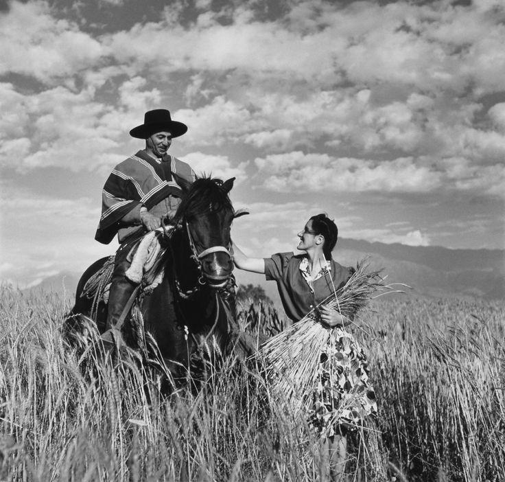 Maria Vial de Prieto Petting Gaucho's Horse in Chile by Toni Frissell
