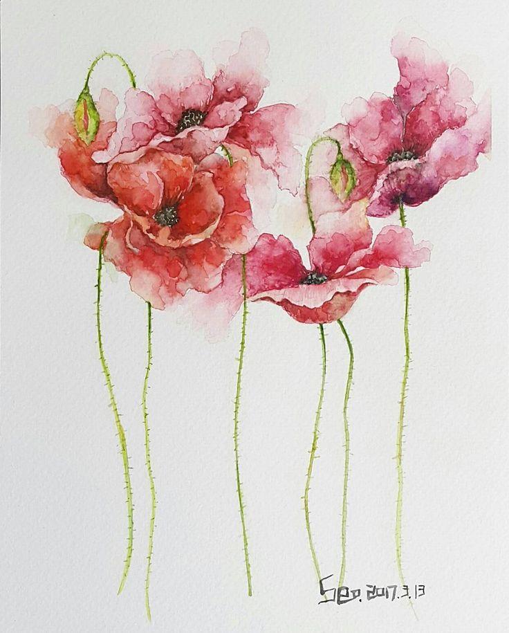 """좋아요 54개, 댓글 18개 - Instagram의 Youyeong.Seo(@blibliblibla)님: """"내스타일대로 쓱싹쓱싹🖌 #poppy #양귀비 #flowers #floralpainting #painting #drawing #꽃 #watercolors #watercolour…"""""""