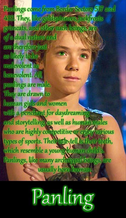 That's Jeremy Sumpter as Peter Pan in the 2003 film, btw.