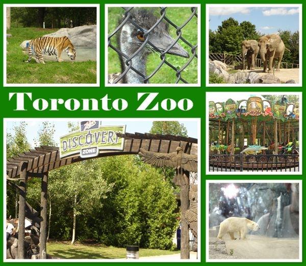 Toronto Zoo, Toronto, Ontario