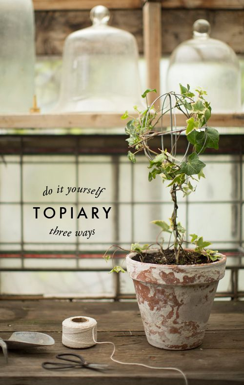 3 ways to make a topiary - This is a great article with detailed instructions on how to make Ivy, Rosemary and Boxwood topiaries. - The House That Lars Built