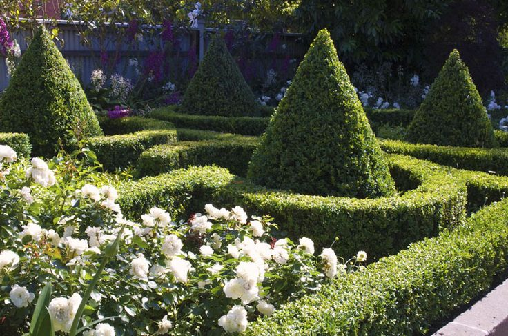 1000 images about topiaries on pinterest