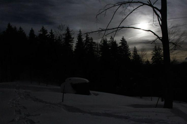 La luna, la neve, le ciaspole