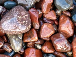 Why you should haveexotic pebbles in youryard