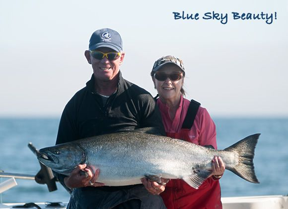 Blue Sky Beauty! Karen Griffin released this huge 51-pounder after a long fight off Parker Point on Sunday. http://www.peregrinelodge.com/blog.php?p=250