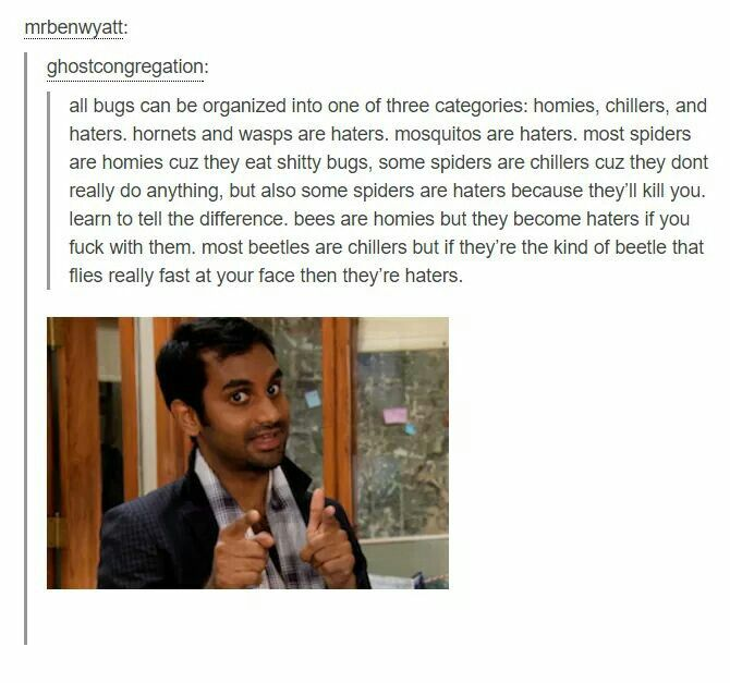 Science side of tumblr explains it all